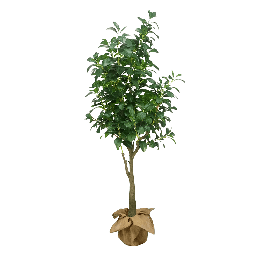 Realistic Ornamental Watercress Potted Faux Plant 155cm