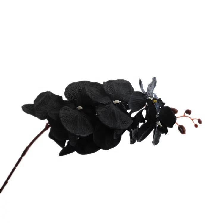 Artificial Phalaenopsis Silk Orchid Flower Black - Propstation