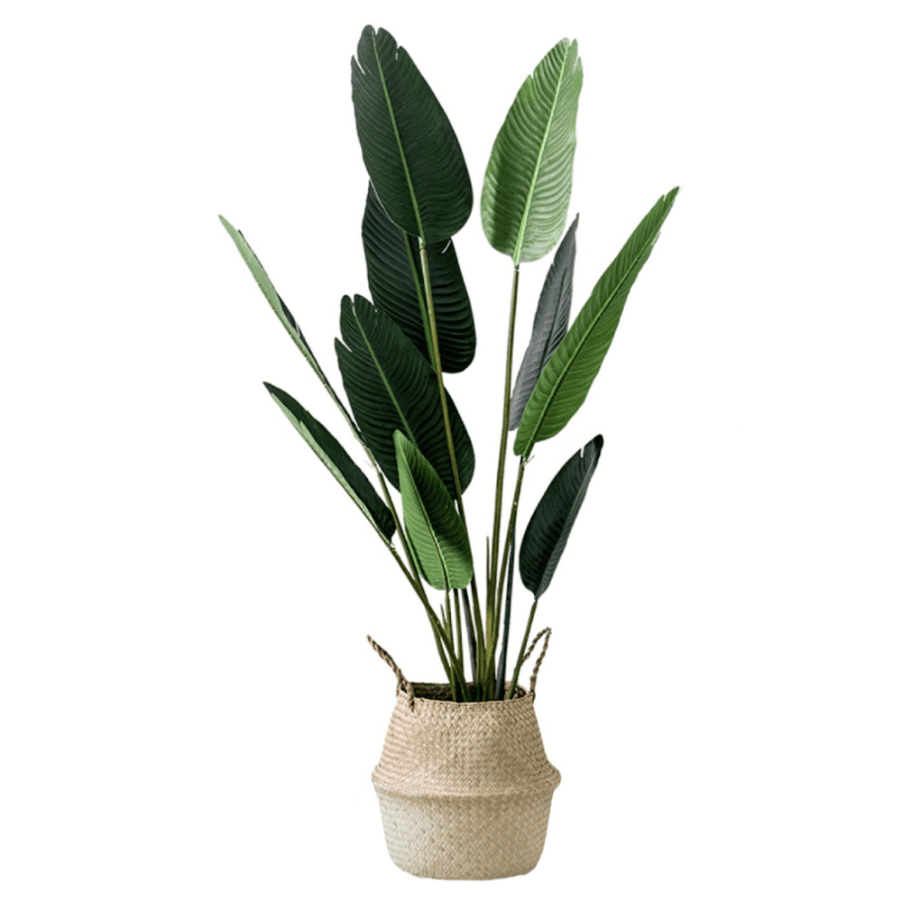 Potted Faux Traveller Ravenala Palm Tree 160cm with Natural Seagrass Basket - Propstation