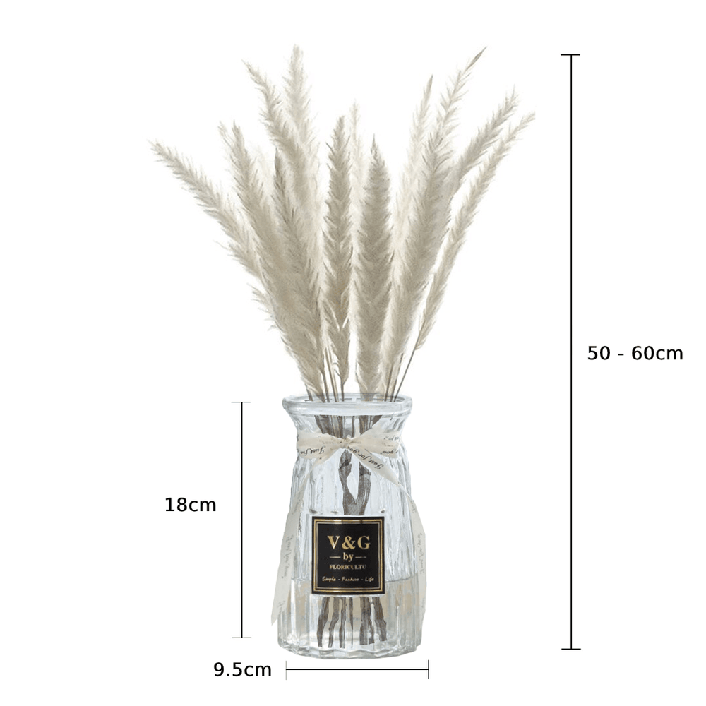 Ornamental Dried Preserved Pampas Grass White in Clear Glass Vase - Propstation