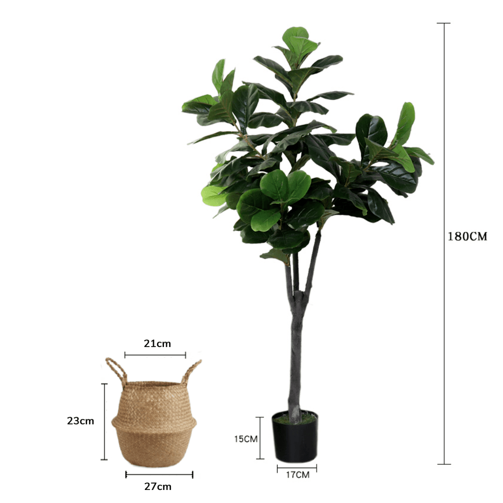 Potted Faux Silk Fiddle Leaf Fig Tree Plant 180cm in Natural Seagrass Basket - Propstation