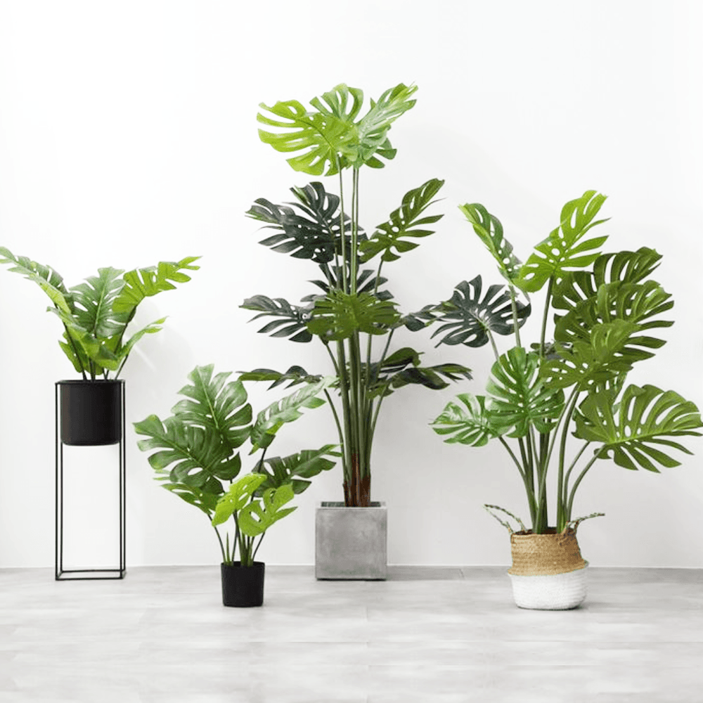 Potted Faux Turtle Monstera Simulation Tree Plant 120cm - Propstation