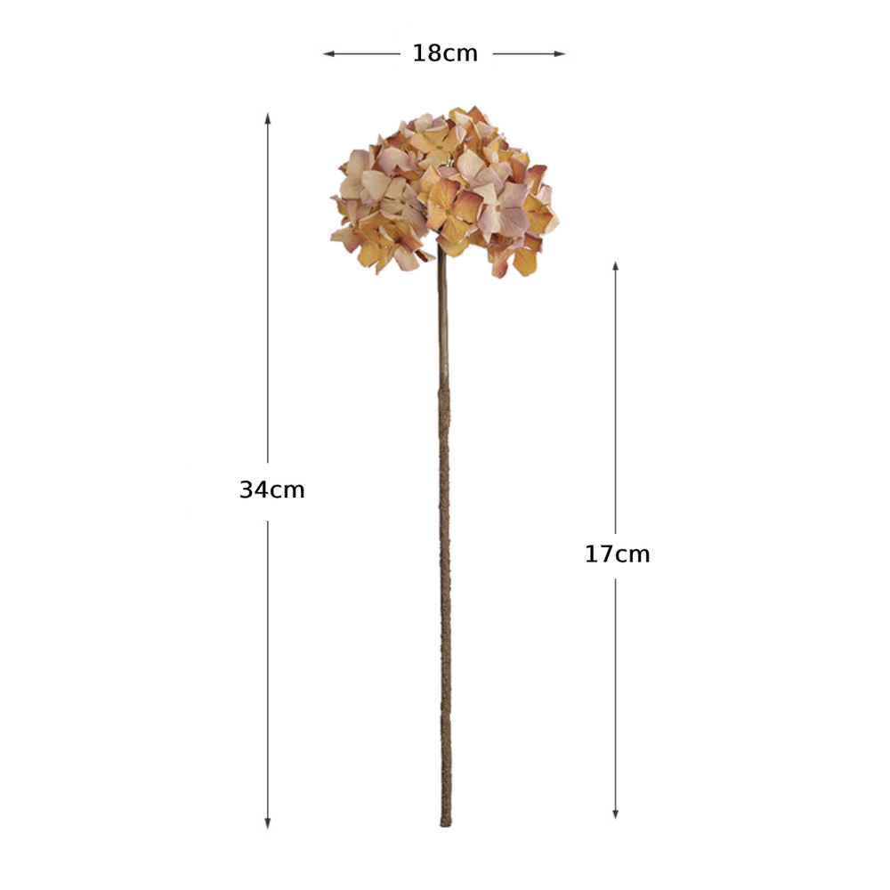 Rustic Preserved Dried Hydrangea Flower - Amber - Propstation