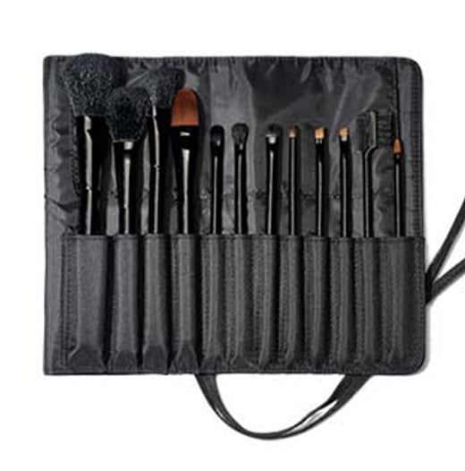 Professional Makeup Artist Brush Set