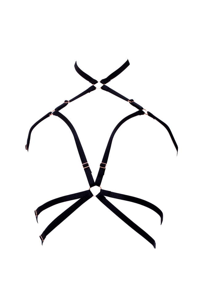 Impel Harness