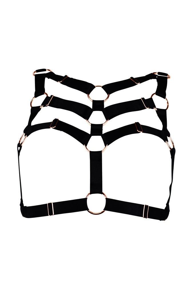 Envelop Harness