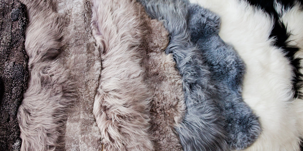Swatch of different colored British, Australian and Icelandic Sheepskin Rugs