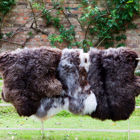 British Rarebreed Sheepskin Rugs