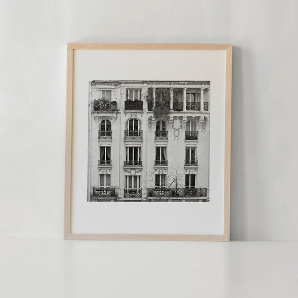 Fenetre sur Paris Art Print