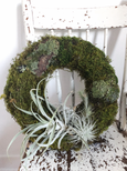 WREATH AIR PLANT AND MOSS FLORAL ARRANGEMENT