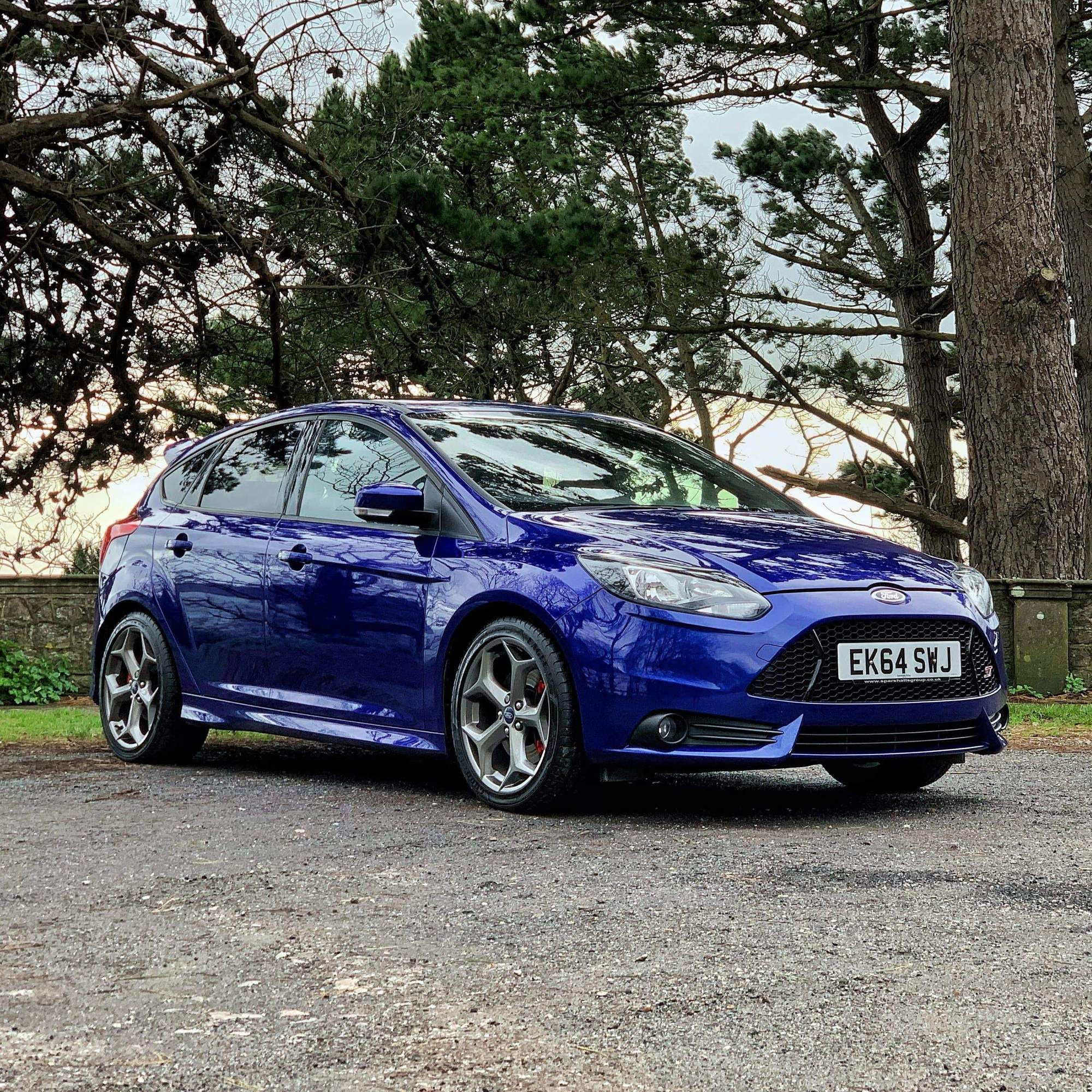 5th February Focus ST Results