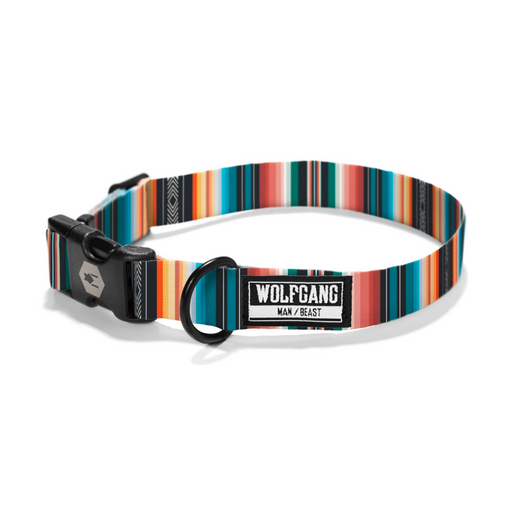 Wolfgang Man & Beast | LostArt Dog Collar