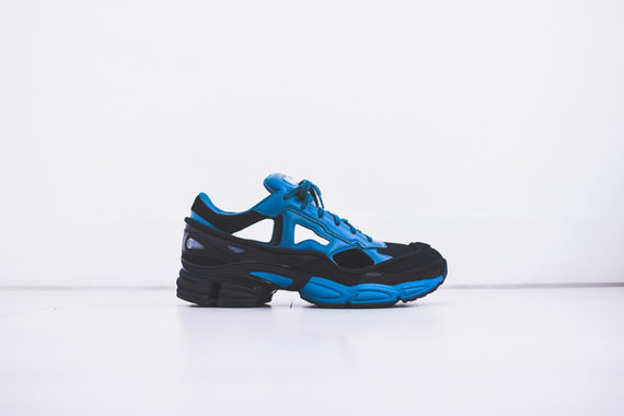 adidas by Raf Simons Replicant Ozweego Pack