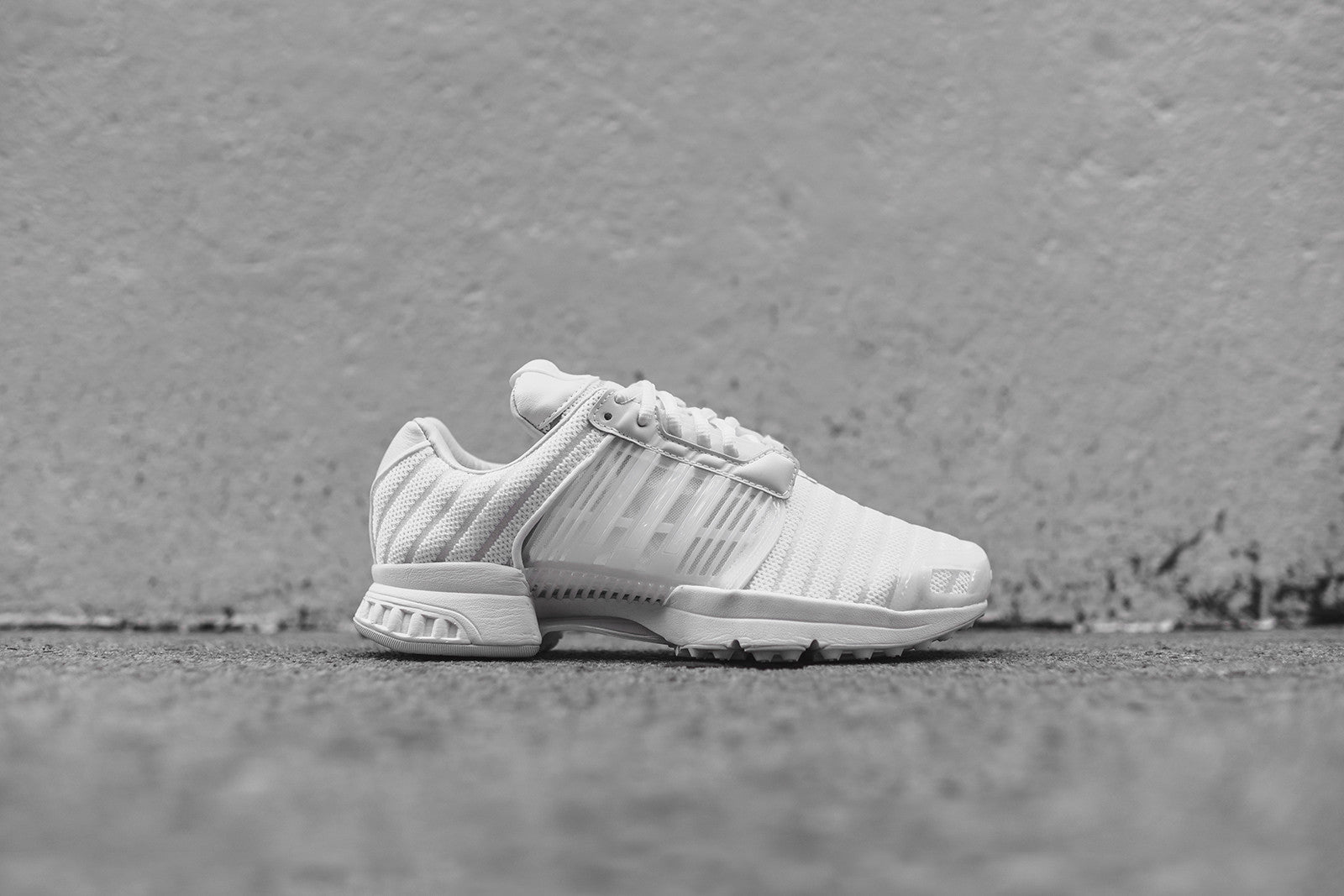 check out 543aa 3a5a7 ... italy adidas consortium x sneakerboy x wish climacool 1 pk white 8ca17  c0eca ...