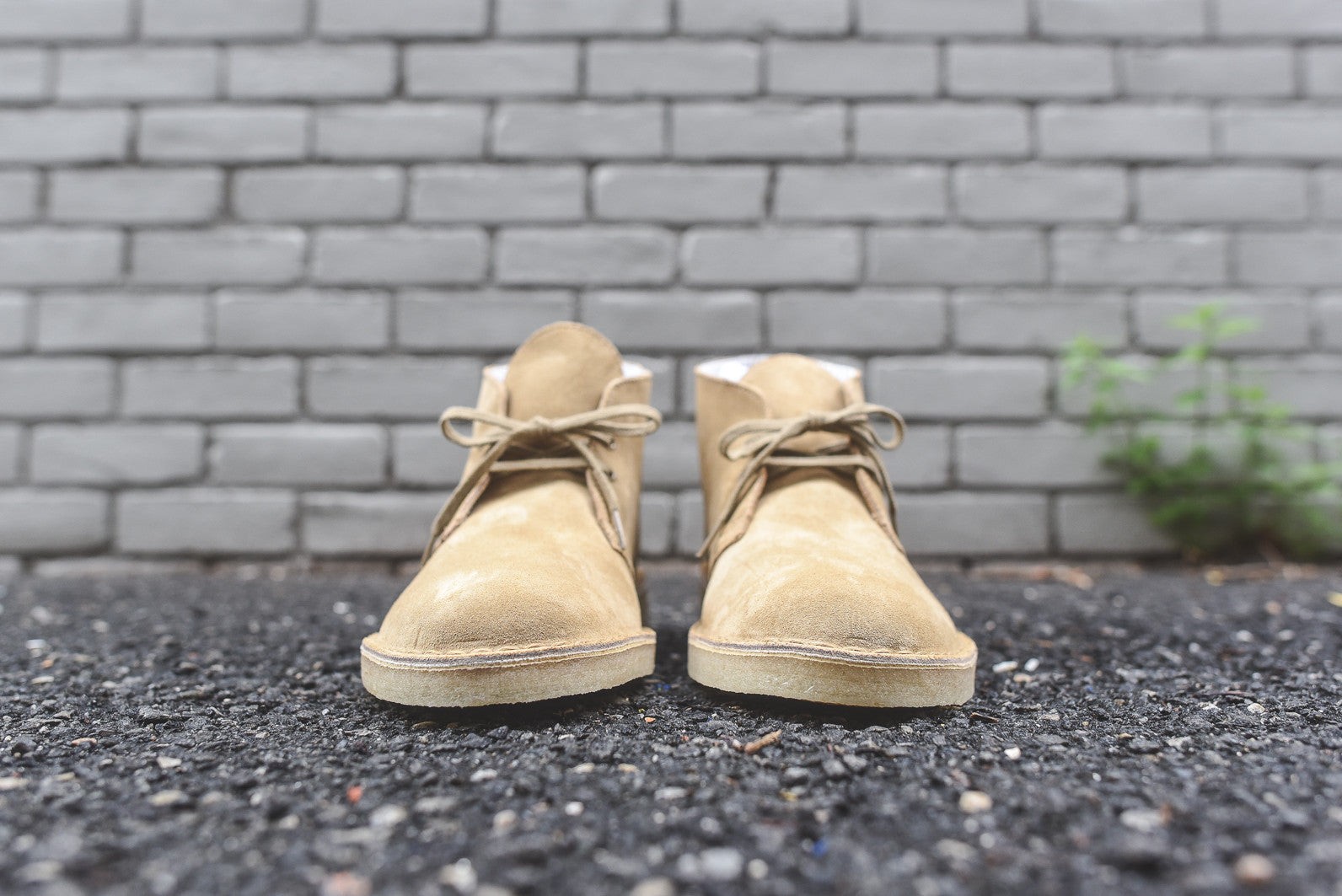 Clarks Desert Boot - Oakwood