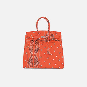 The World Is Yours Paisley Brief Bag 40 - Coral / Silver