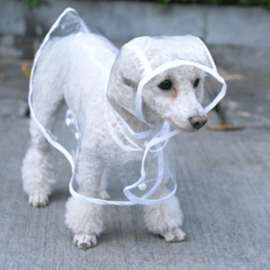 Transparent Waterproof Raincoat For Dogs - For My Doggo