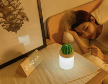 Load image into Gallery viewer, Cactus Air Humidifier