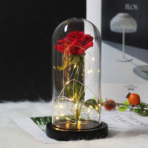 Beauty & The Beast Immortal Rose