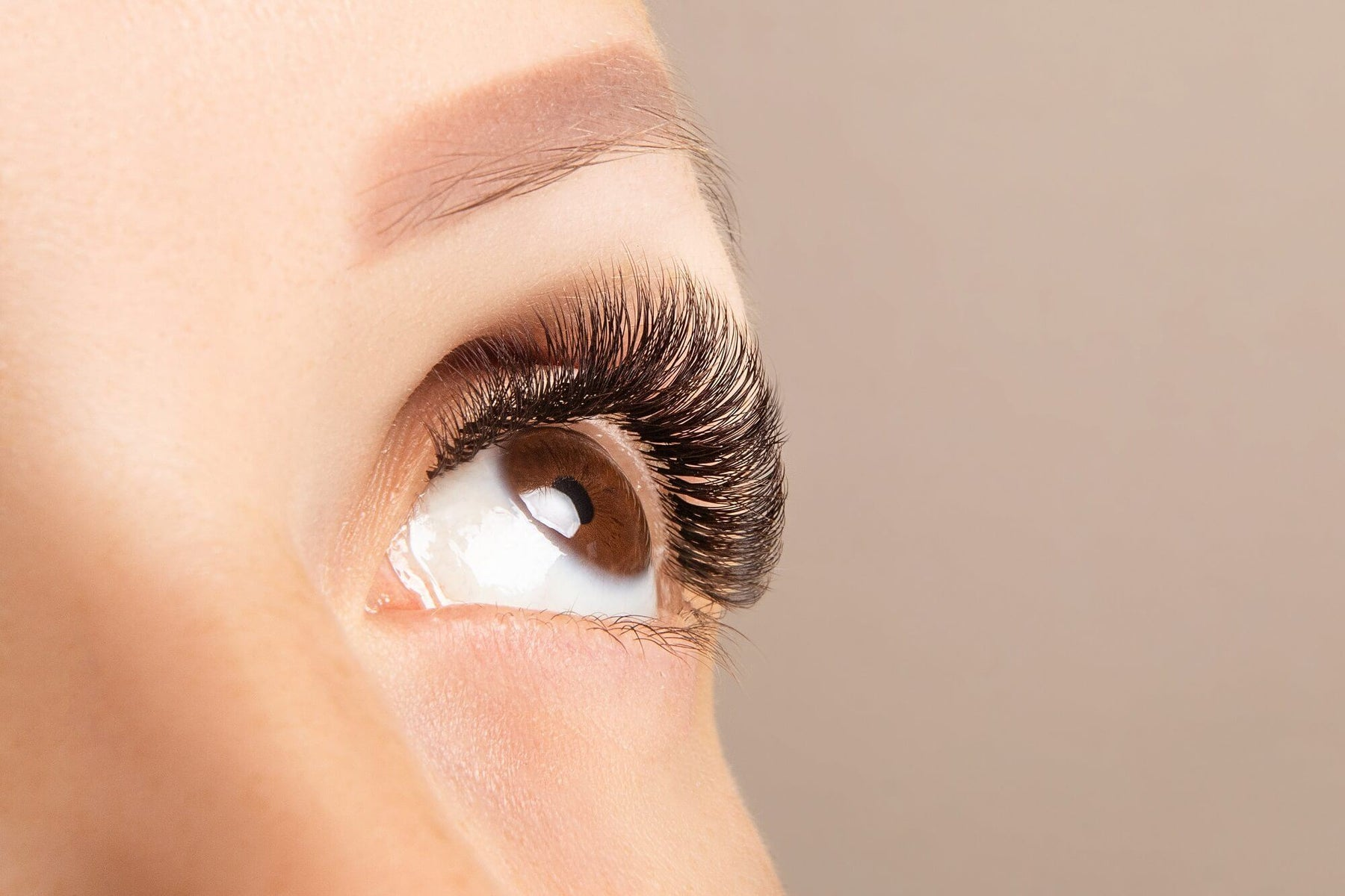 Your guide to Russian Volume Lash Extensions