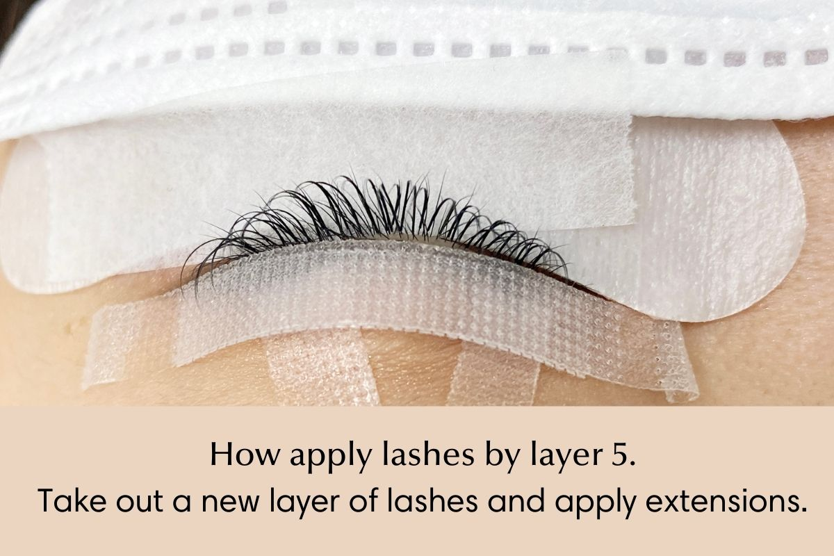 How to isolate and apply lash extensions by layer - 5