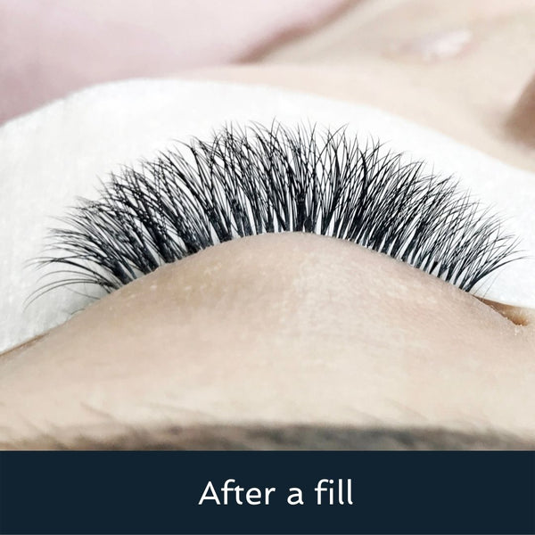 How to lash extension fill: tips and tricks
