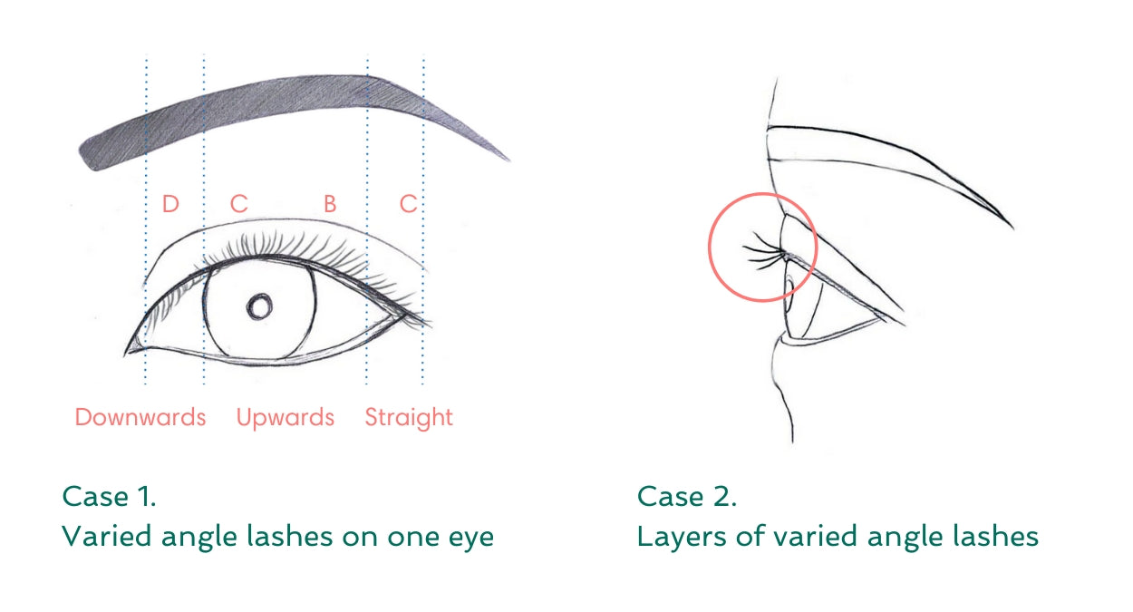 Eyelash extension curls guideline by BL Blink Lashes