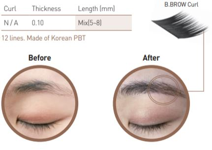 bl blink eyebrow extensions - b brow - eyebrow extension supplies and wholesale