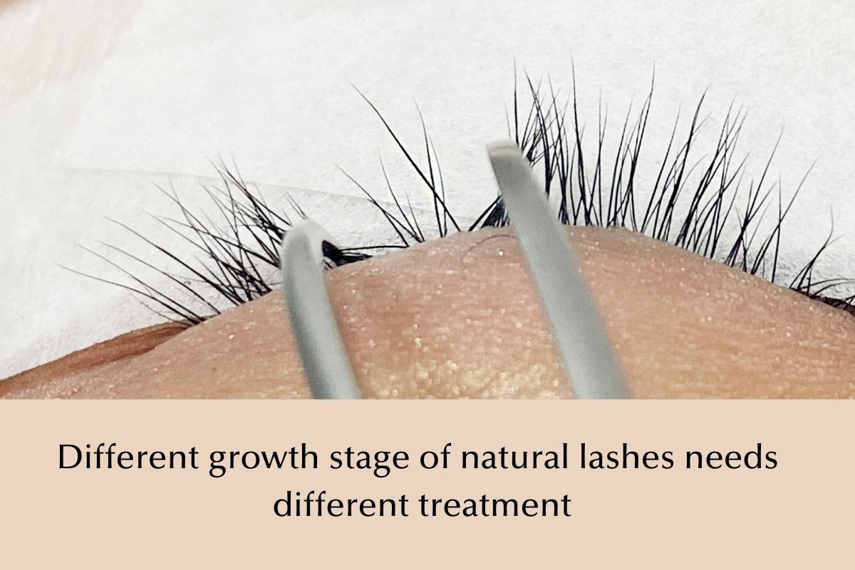 Different lash growth stage needs different lash extensions