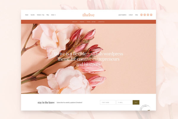 website and branding for beauty business by bl blink lashes
