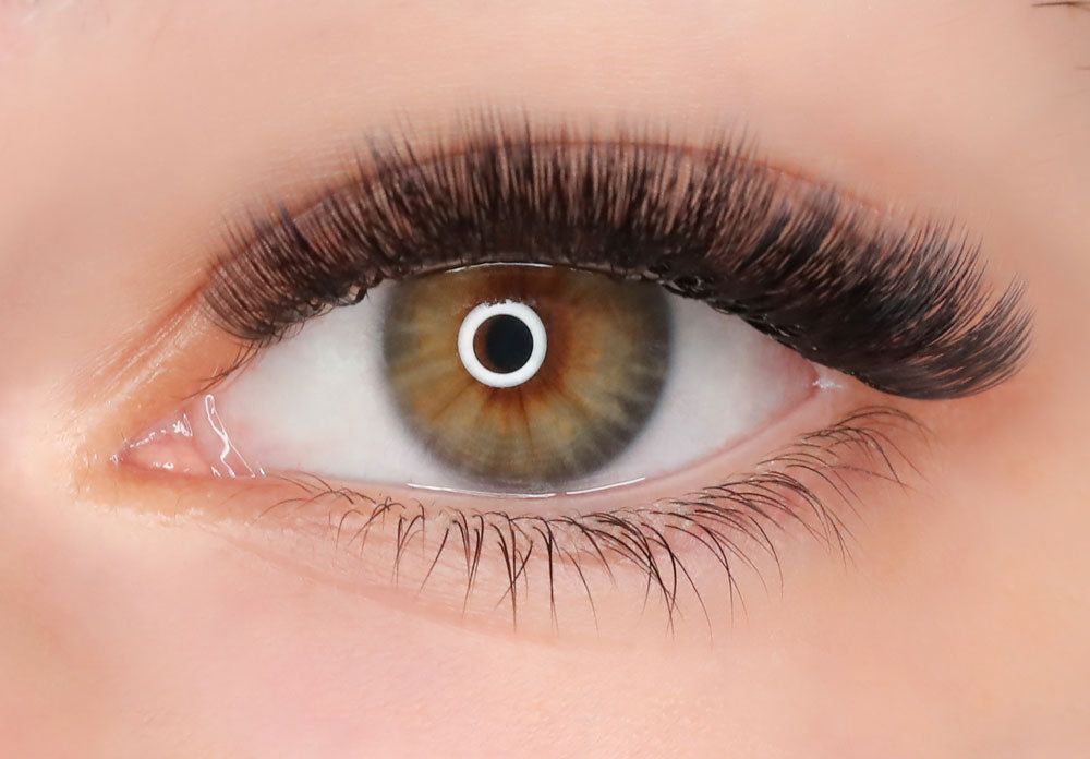 Glam 5D premade lash for eyelash extension - after photo