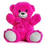 Bright Pink 21cm Teddy Bear Perfect for Teddy Bear Picnics, schools, gifts, party bags and treats