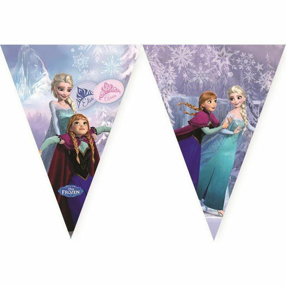 Disney Frozen Ice Skating Flag Banner - Birthday - Anna - Elsa - Princess