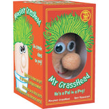 Mr Grasshead in Box