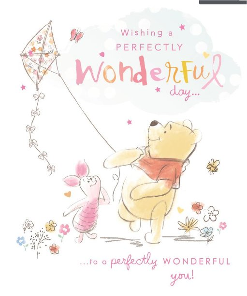 Winnie The Pooh Perfectly Wonderful day Birthday Card