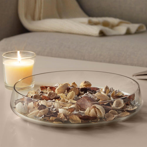 Sea Shell Potpourri