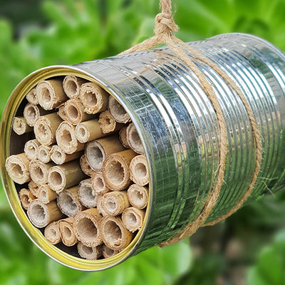 Create a DIY Bug Hotel for your Garden