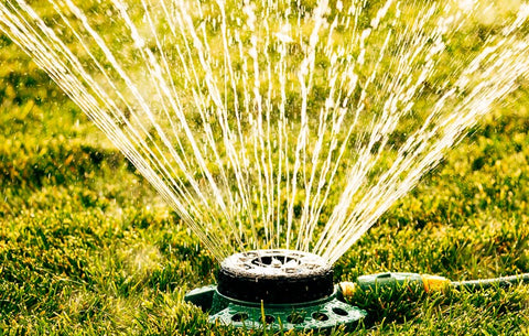 sprinkler-in-garden