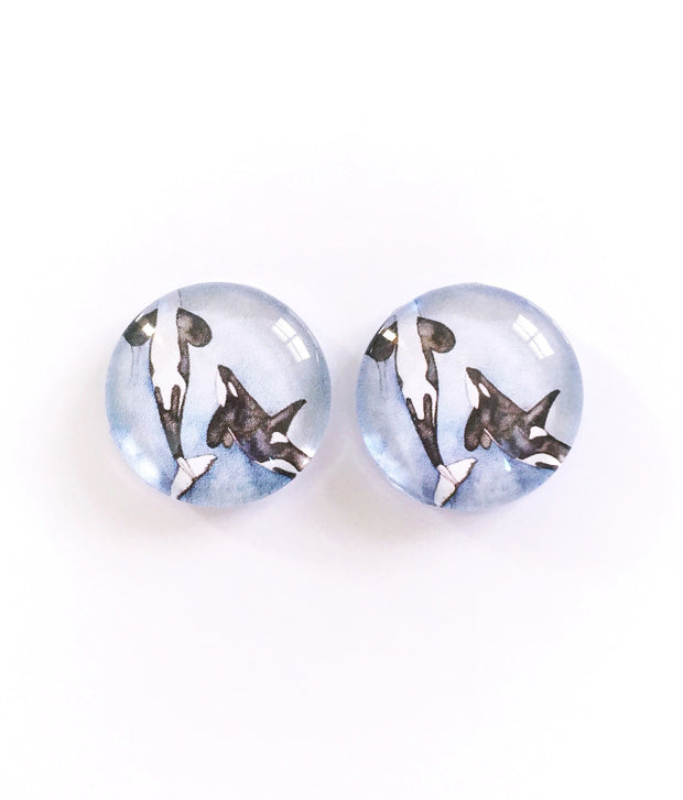 The 'Orca' Glass Earring Studs
