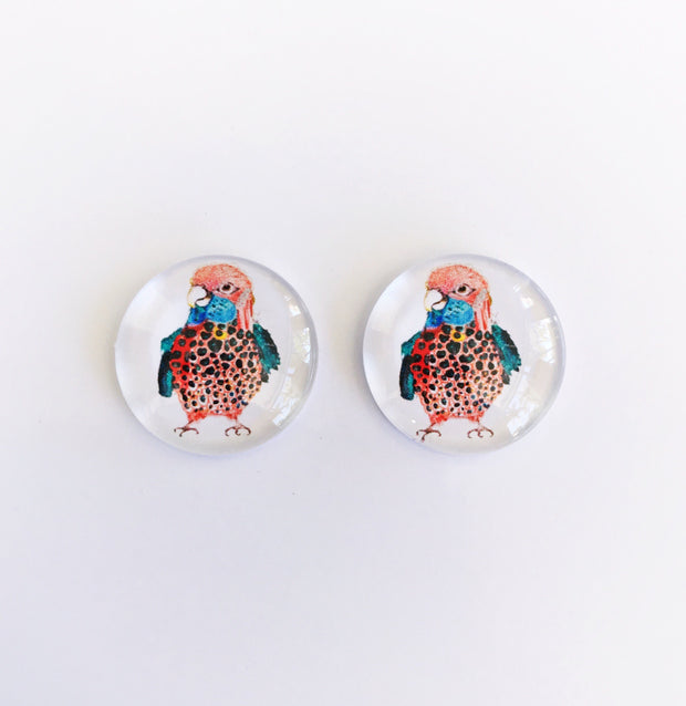 The 'Bird Watcher' Glass Earring Studs