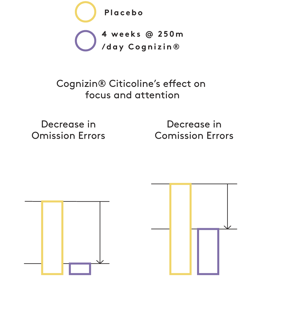 Citicoline effect on focus and attention