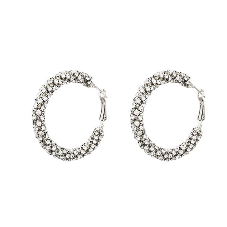 Vera Hoop Crystal Earrings 80068