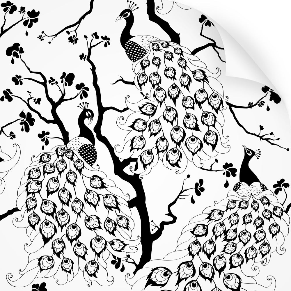 wallpaper swatch with peacock design, in black and white