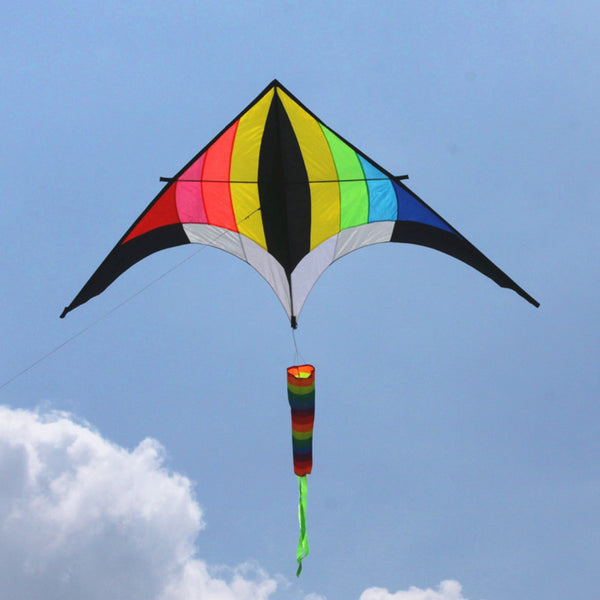 Free shipping high quality rainbow kite
