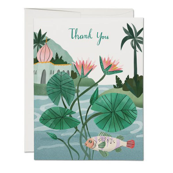 Thank You Water Lily