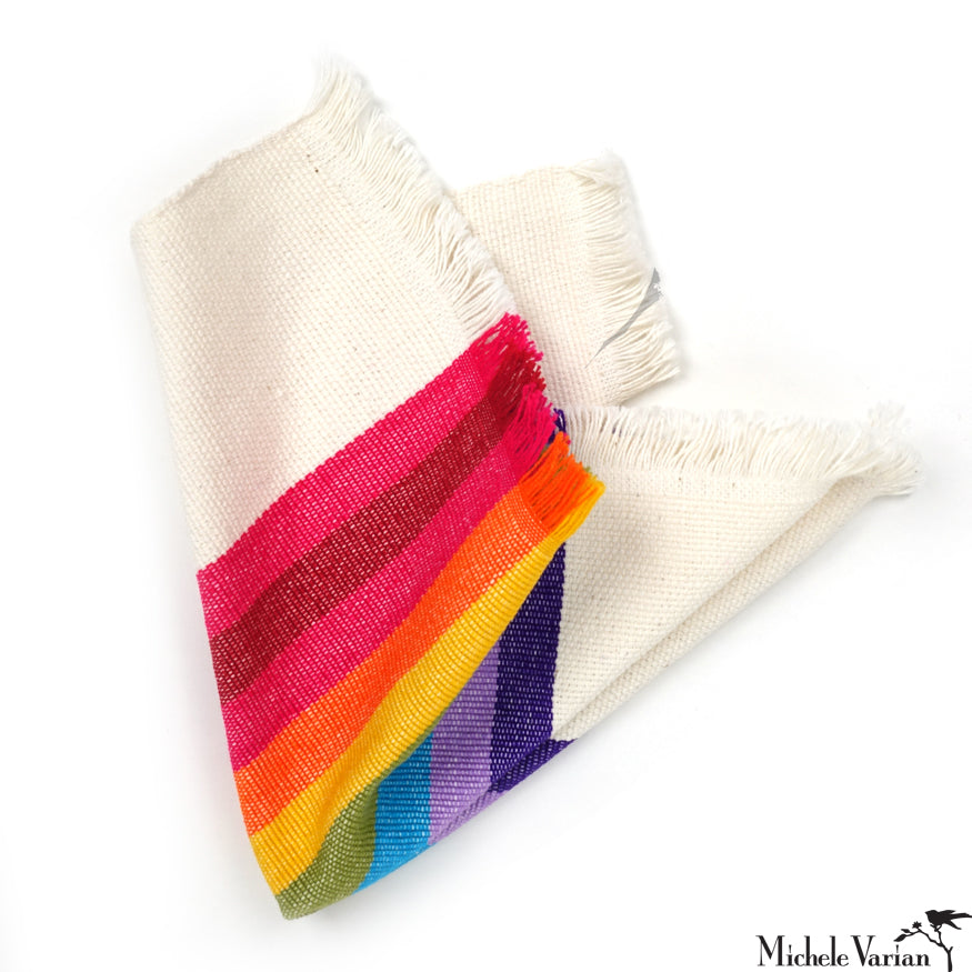 Fat Rainbow Napkin