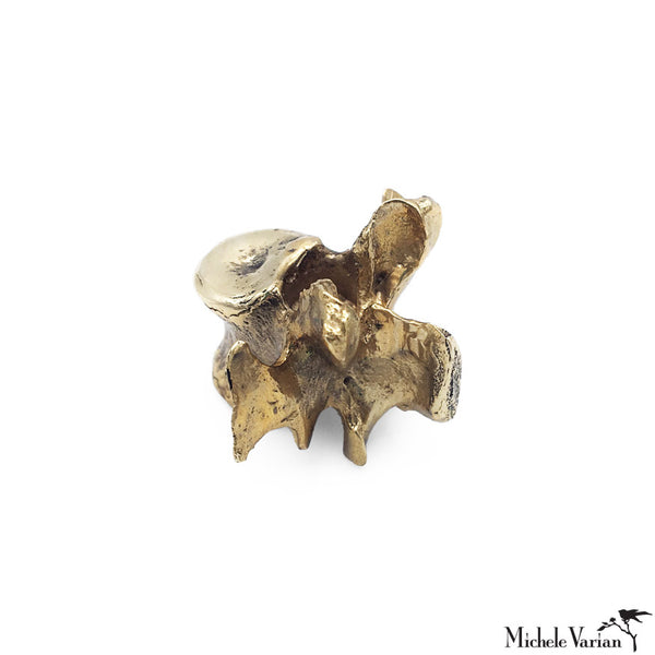 Small Vertebrae Brass Sculpture