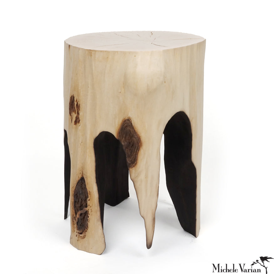 Burnt Out Willow Stump Side Table 01