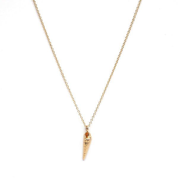Gold Auger Shell Necklace
