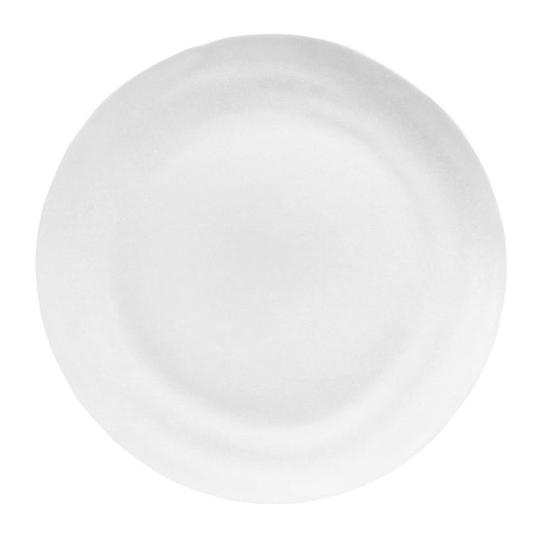 Matte Porcelain Dinner Plate Set of 4